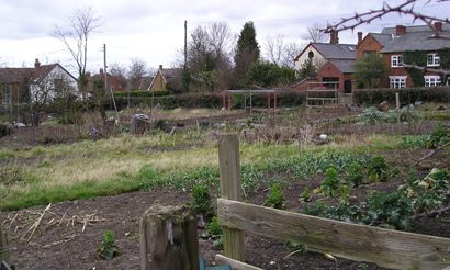 Barby Allotments
