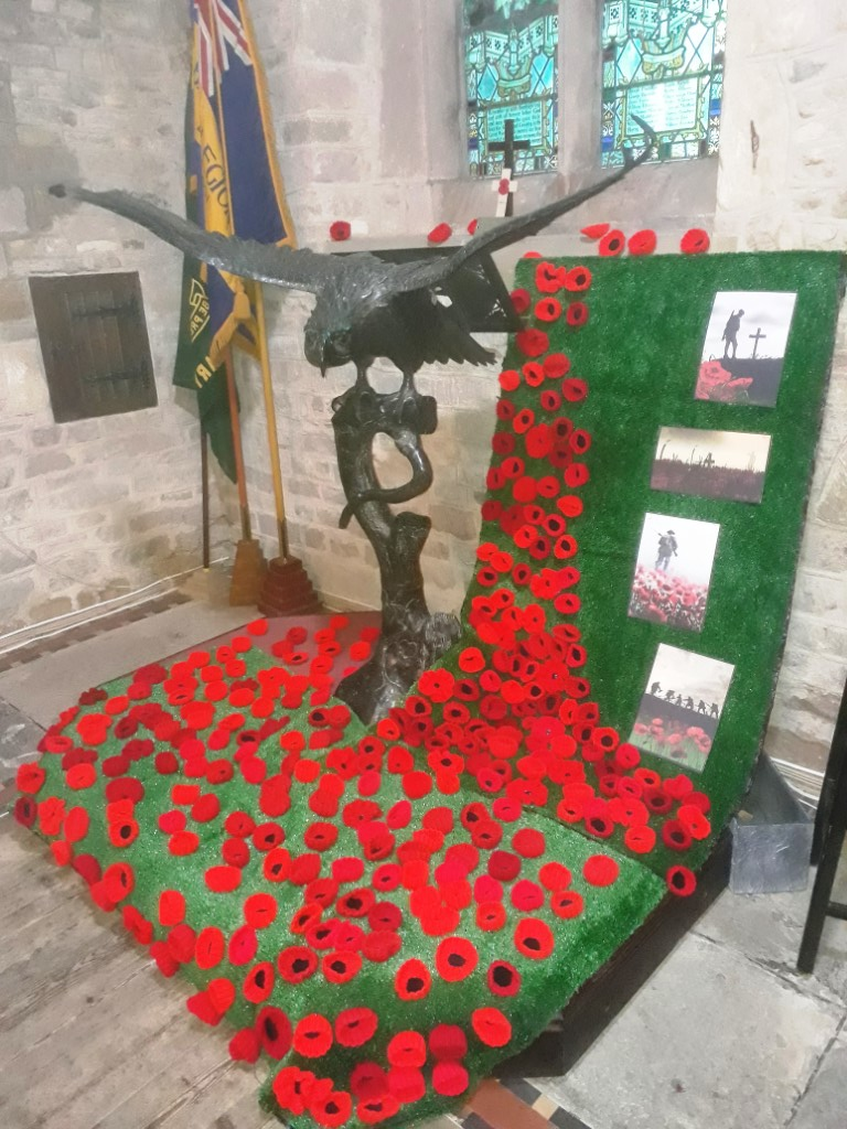 Poppies to commemorate the 100th Anniversary of the end of the First World War